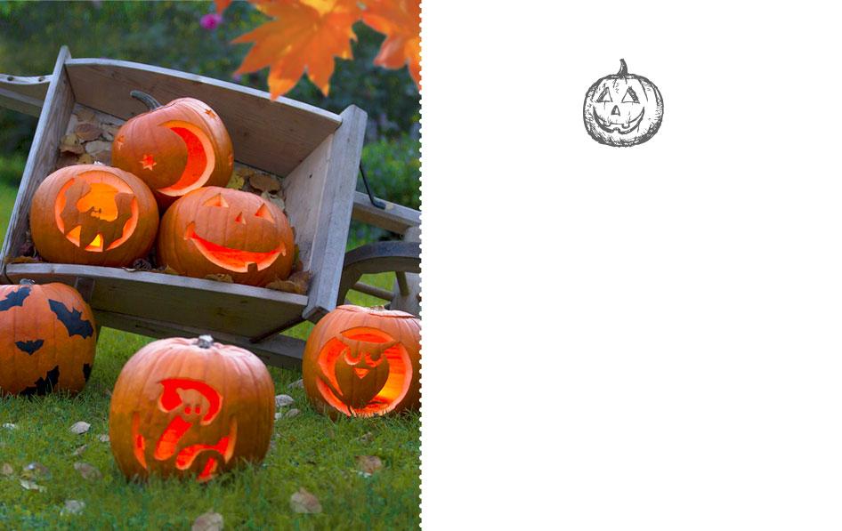 Diy citrouille d halloween creuser jardinerie truffaut v nement jardinerie truffaut - Comment creuser une citrouille ...