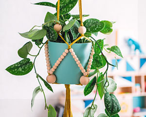 Suspension plante macramé DIY