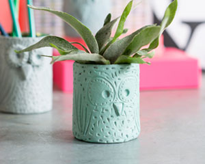 DIY DÉCO : Pot chouette