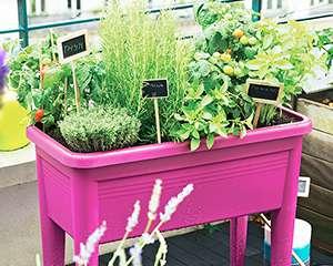 carnet d id es potager facile carr potager v nement jardinerie truffaut. Black Bedroom Furniture Sets. Home Design Ideas
