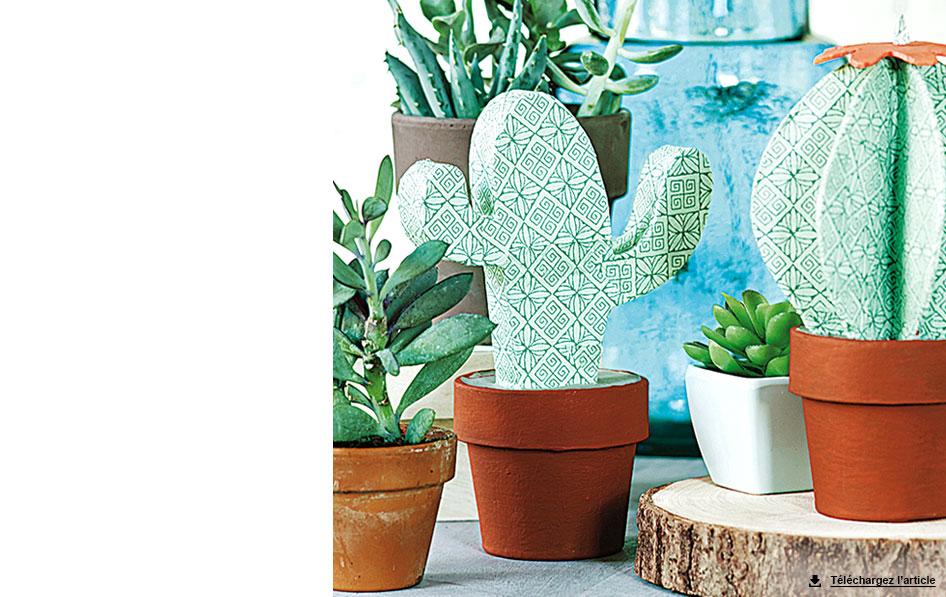 Cactus en papier m ch carnet d id es jardinerie truffaut v nement jardinerie truffaut - Grand cactus d interieur ...